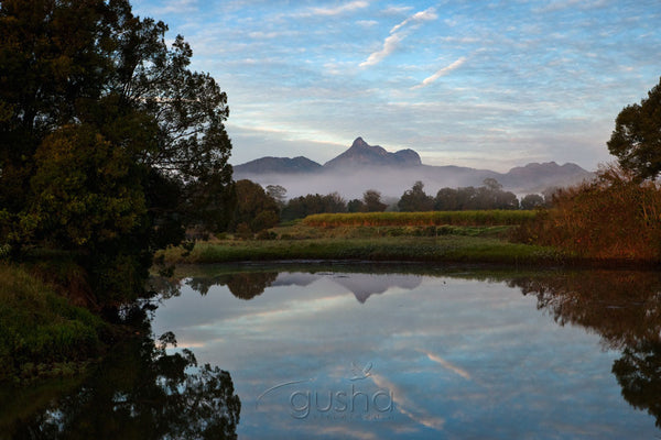 Photo of Mt Warning MU2273 - Gusha