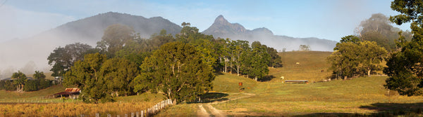Photo of Mt Warning MU2274 - Gusha
