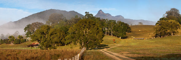 Photo of Mt Warning MU2275 - Gusha