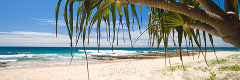 Photo of Valla Beach NB2446 - Gusha