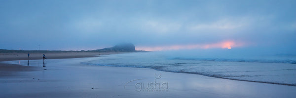 Photo of Nobbys Beach NE1548 - Gusha