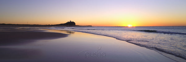 Photo of Nobbys Beach NE1595 - Gusha