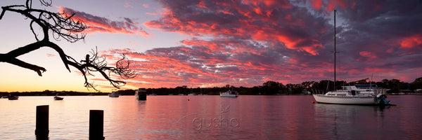 Photo of Noosa River NO2153 - Gusha