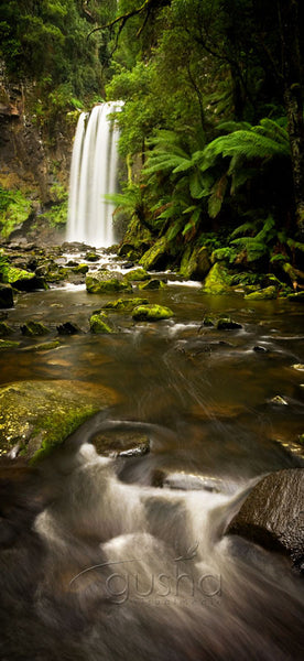 Photo of Otway National Park OT0733 - Gusha