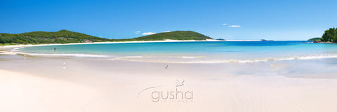 Photo of Fingal Bay PS0107 - Gusha