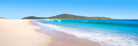 Photo of Fingal Bay PS0223 - Gusha