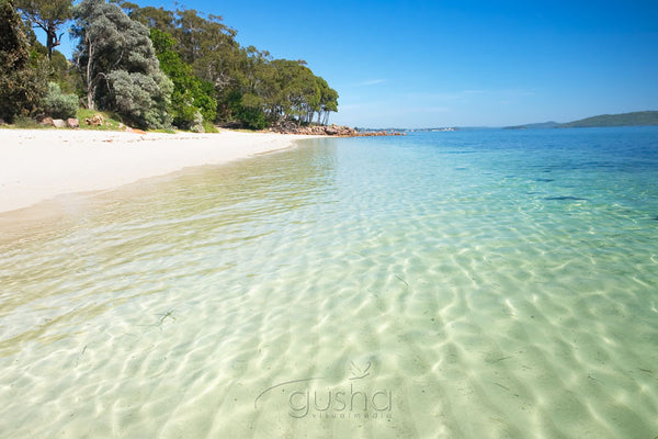 Photo of Dutchmans Beach PS0427 - Gusha