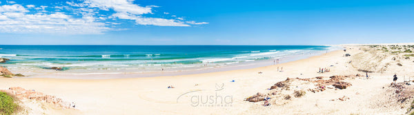 Photo of Stockton Beach PS0816 - Gusha