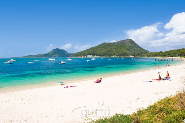 Photo of Shoal Bay PS0983 - Gusha