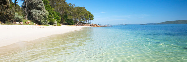 Photo of Dutchmans Beach PS2088 - Gusha