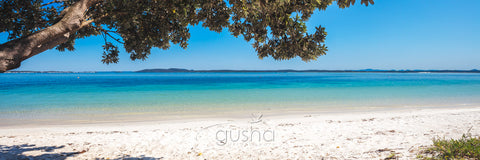 Photo of Nelson Bay Beach