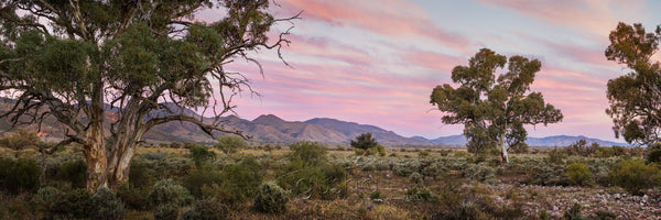 Sunset photo of farmland near the Flinders Ranges