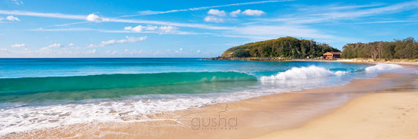 Photo of Scotts Head SH1639 - Gusha