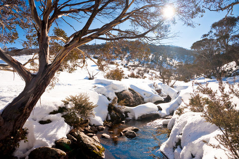 Photo of Thredbo River SN2420 - Gusha