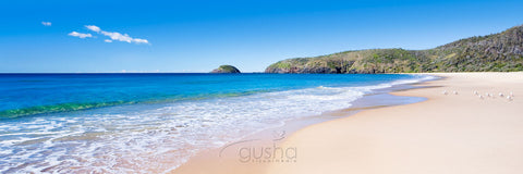 Photo of Gap Beach SWR0176 - Gusha