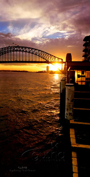 Photo of Sydney Harbour SYD0035 - Gusha