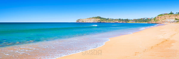Photo of Mona Vale Beach SYD0237 - Gusha