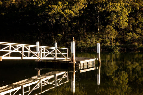 Photo of McCarrs Creek SYD0461 - Gusha