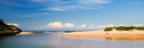 Photo of North Narrabeen SYD0504 - Gusha
