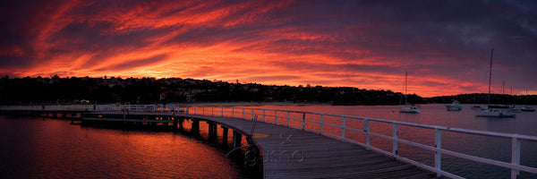 Photo of Balmoral Pier SYD0594 - Gusha