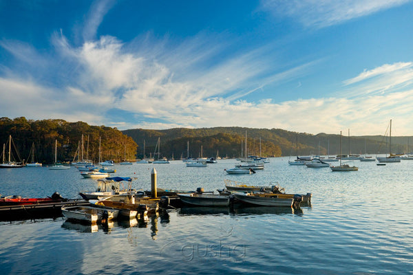 Photo of Church Point SYD0630 - Gusha