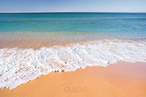 Photo of Palm Beach SYD0653 - Gusha