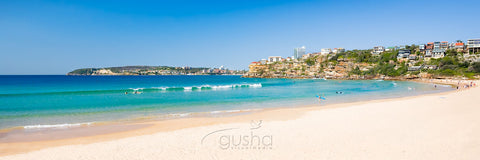 Photo of Freshwater Beach SYD0664 - Gusha