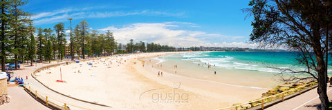 Photo of Manly Beach SYD0684 - Gusha