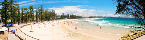 Photo of Manly Beach SYD0685 - Gusha