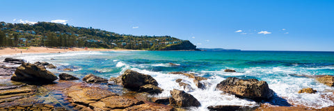 Photo of Whale Beach SYD0720 - Gusha