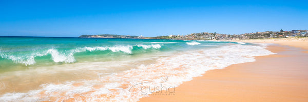 Photo of Curl Curl Beach SYD0723 - Gusha