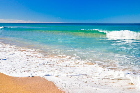 Photo of Narrabeen Beach SYD0804 - Gusha