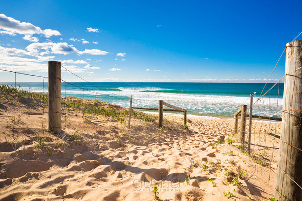 Photo of Narrabeen Beach SYD0805 - Gusha