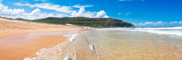 Photo of Palm Beach SYD0842 - Gusha