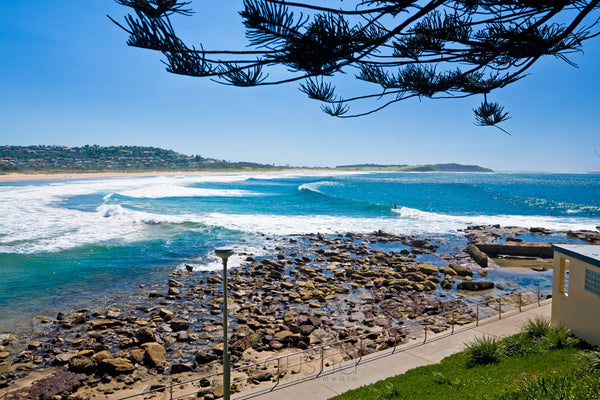 Photo of Dee Why Beach SYD0887 - Gusha