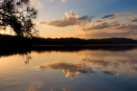 Photo of Narrabeen Lake SYD0896 - Gusha
