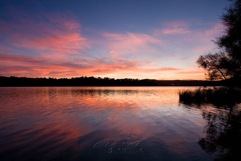 Photo of Narrabeen Lake SYD0897 - Gusha