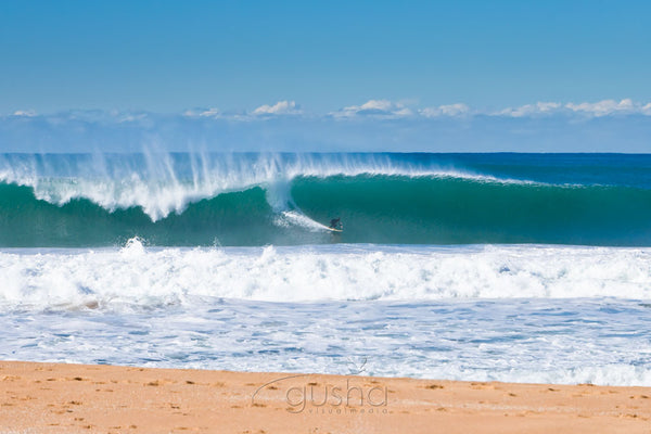 Photo of Narrabeen Beach SYD0898 - Gusha