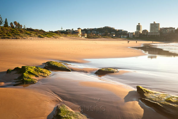 Photo of Freshwater Beach SYD0944 - Gusha