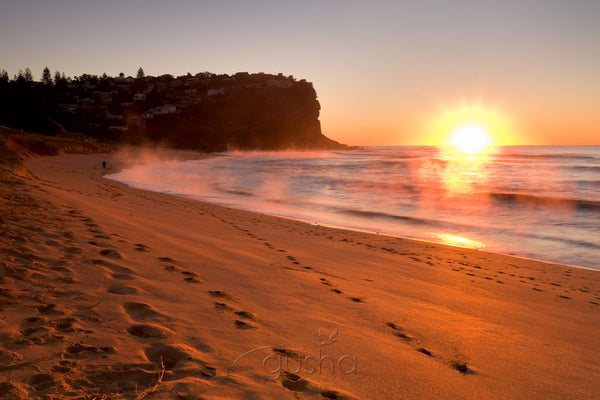 Photo of Bungan Beach SYD0962 - Gusha