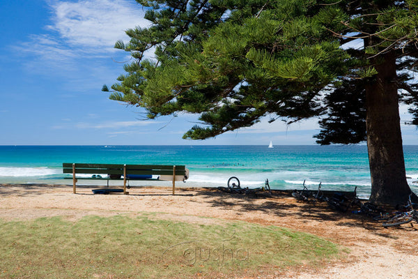 Photo of Avalon Beach SYD1009 - Gusha