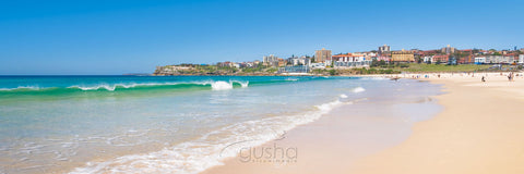 Photo of Bondi Beach SYD1058 - Gusha