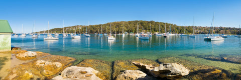 Photo of North Harbour SYD1105 - Gusha