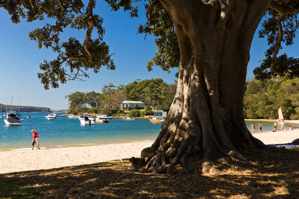 Photo of Balmoral Beach SYD1124 - Gusha