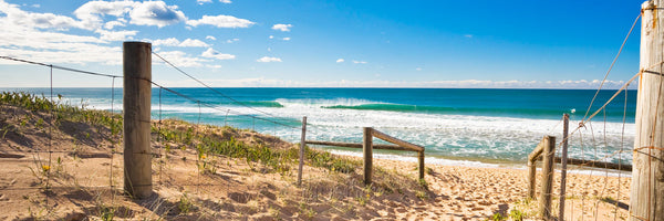 Photo of Narrabeen Beach SYD1128 - Gusha
