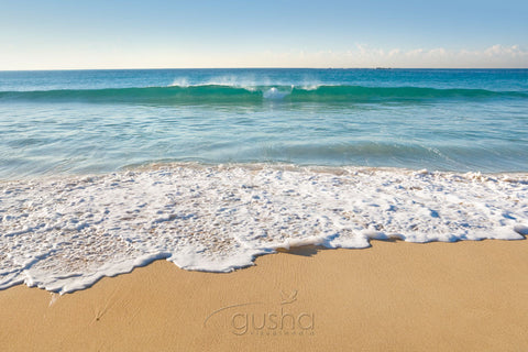 Photo of Coogee Beach SYD1141 - Gusha