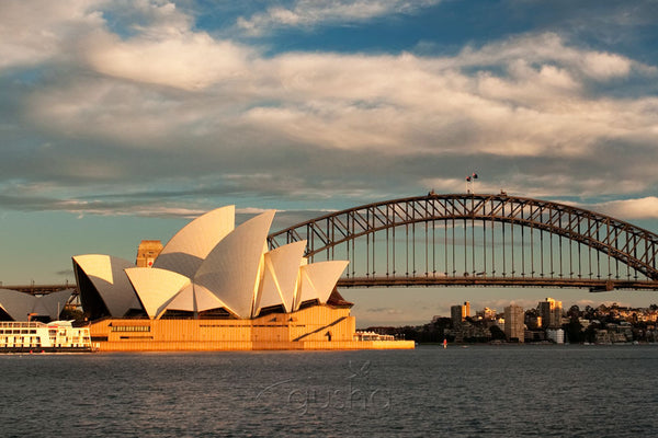 Photo of Sydney Harbour SYD1145 - Gusha