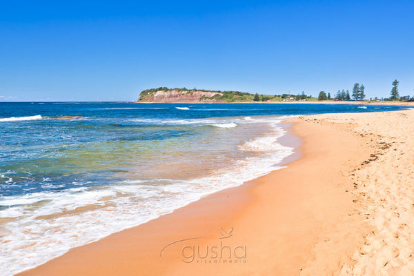 Photo of Fishermans Beach SYD1149 - Gusha