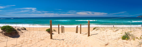 Photo of Curl Curl Beach SYD1178 - Gusha