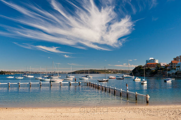 Photo of Little Manly Beach SYD1279 - Gusha